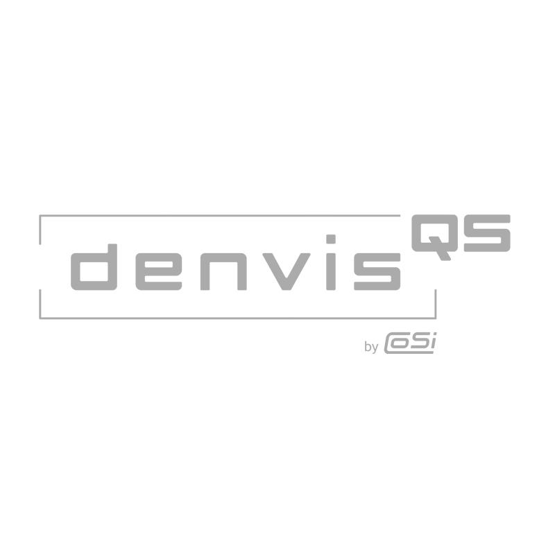 denvisQS Logo